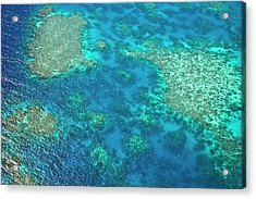 Aerial View Of The Great Barrier Reef Acrylic Print by Miva Stock