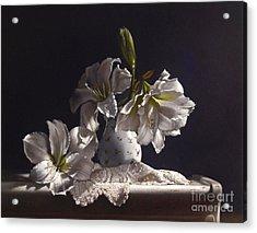 Amaryllis Study Acrylic Print