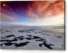 Acrylic Print featuring the photograph Arctic Sea Ocean Water Antarctica Winter Snow by Paul Fearn