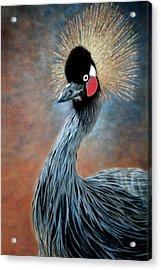 Attitude Bird Acrylic Print