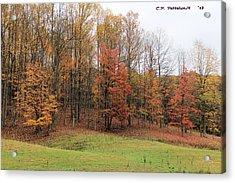 Autumn Color Acrylic Print by Carolyn Postelwait