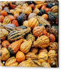 Autumn Gourds Acrylic Print by Joann Vitali