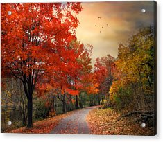 Acrylic Print featuring the photograph Autumn Maples by Jessica Jenney