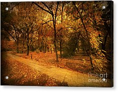 Autumn Path Acrylic Print by Svetlana Sewell