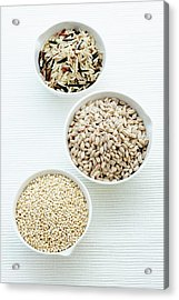 Barley Acrylic Print by Gustoimages