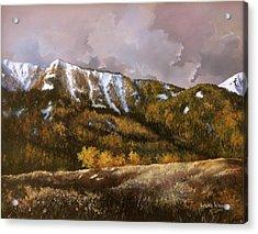 Bear Claw Acrylic Print
