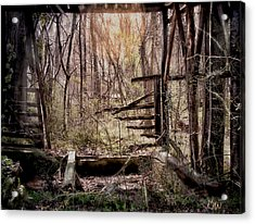 Acrylic Print featuring the photograph Been There by Bonnie Willis