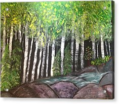 Acrylic Print featuring the painting Birches By Falls by Paula Brown