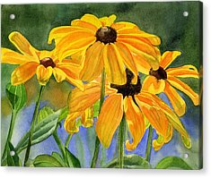 Black Eyed Susans Acrylic Print by Sharon Freeman