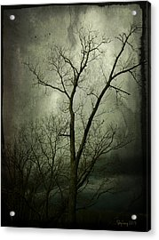 Acrylic Print featuring the photograph Bleak by Cynthia Lassiter