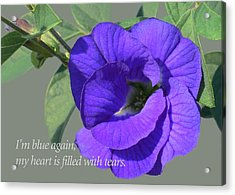 Blue Again Acrylic Print by James Temple
