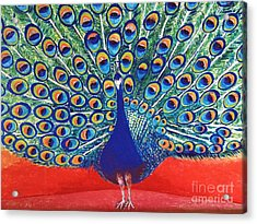 Blue Peacock Acrylic Print by Jasna Gopic