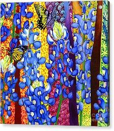 Bluebonnet Garden Acrylic Print by Hailey E Herrera