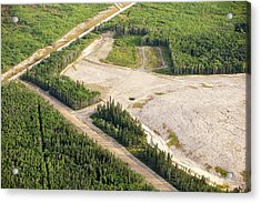 Boreal Forest Felled For A Tar Sands Mine Acrylic Print by Ashley Cooper