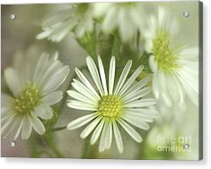 Bouquet Of White And Green Acrylic Print by Julie Palencia