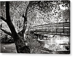 Bridge At Ellison Park Acrylic Print by Sara Frank