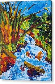 Burch Creek Acrylic Print