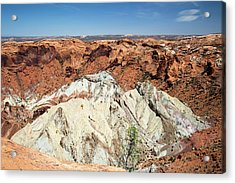 Canyonlands National Park Acrylic Print by Jim West
