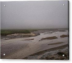 Cape Cod Marsh Acrylic Print