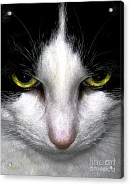 Acrylic Print featuring the photograph Casey by Dale   Ford