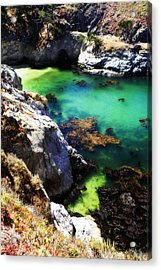 China Cove -5 Acrylic Print by Alan Hausenflock