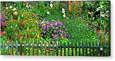 Close-up Of Flowers, Muren, Switzerland Acrylic Print