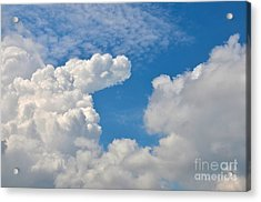 Clouds In The Sky Acrylic Print