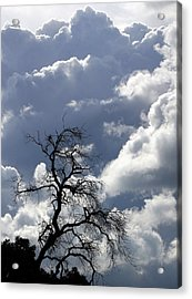 Cloudscape Acrylic Print by Ron Romanosky