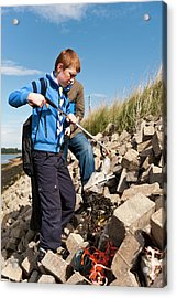 Collecting Litter Acrylic Print by Matthew Oldfield