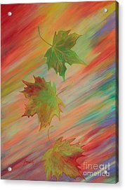 Colours Of Autumn. Inspirations Collection. Acrylic Print