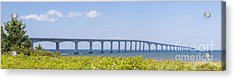 Confederation Bridge Panorama Acrylic Print by Elena Elisseeva