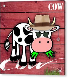 Cool Cow Collection Acrylic Print by Marvin Blaine