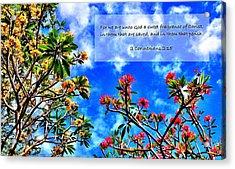 2 Corinthians 2 15 Acrylic Print