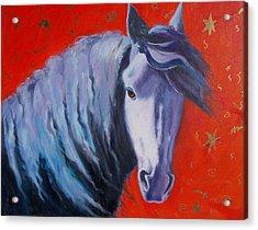 Cosmic Horse Acrylic Print by Pixie Glore
