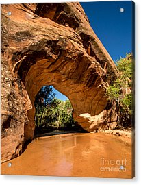 Coyote Natural Bridge - Coyote Gulch - Utah Acrylic Print