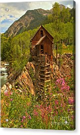 Crystal Mill Wildflowers Acrylic Print by Adam Jewell