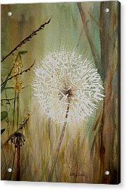 Dandelion Acrylic Print by Betty-Anne McDonald