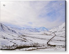 Acrylic Print featuring the photograph Denali by Kate Avery