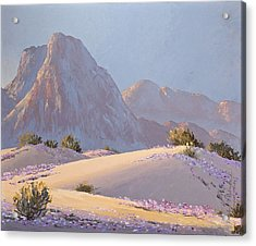Acrylic Print featuring the painting Desert Prelude by Dan Redmon