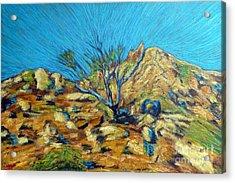 Desert Tree In Blazing Sun Acrylic Print