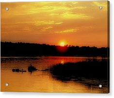 Discovery Acrylic Print by Tom Druin