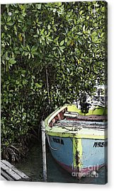 Acrylic Print featuring the photograph Docked By The Mangrove Trees by Lilliana Mendez