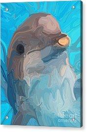 Dolphin Acrylic Print by Chris Butler