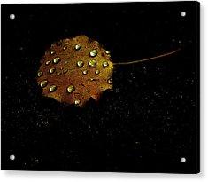 Drops On Autumn Leaf Acrylic Print