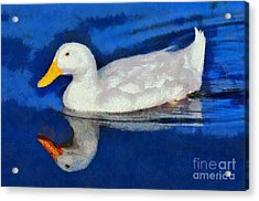 Painting Of Duck Acrylic Print by George Atsametakis