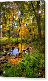 Early Autumn Acrylic Print by Bill Wakeley