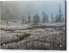 Early Morning Mist Over A Small Pond Acrylic Print