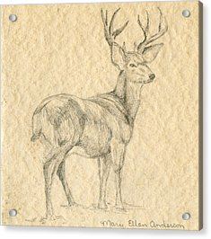 Acrylic Print featuring the drawing Elk by Mary Ellen Anderson