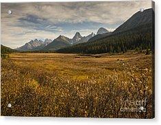 Engadine Meadow Acrylic Print by Ginevre Smith