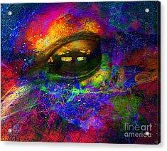 Eye Of Universe Acrylic Print by Irina Hays